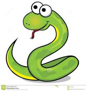 nice-snake-27078615