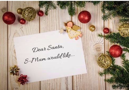dear-santas-mum-would-like-e1513704324212.jpg